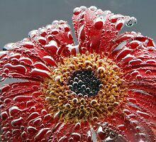 flower by petrosyan