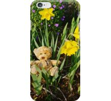 Basking In The Daffodils iPhone Case/Skin