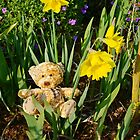 Basking In The Daffodils by Alexandra Lavizzari