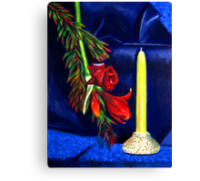 Still Life in Primary Colours Canvas Print