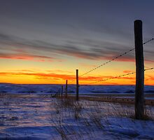 barbed wire sunset by Heath Dreger