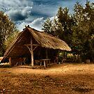 Prehistoric village by Angelique Brunas