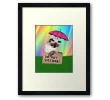 Do Not Disturb! Cat in Box Framed Print