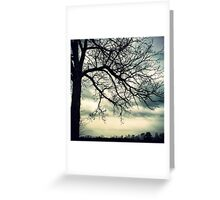 Branches Meet the Clouds Greeting Card