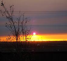 Sunrise and smoke by mtomlin