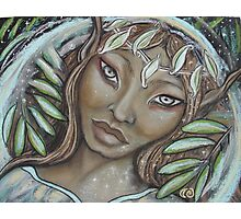 The Willow Faerie Photographic Print