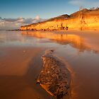 Anglesea Awakes by Neil