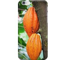 Cacao Fruit © iPhone Case/Skin