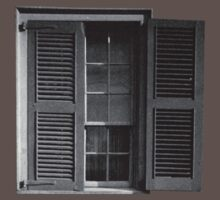 This Old Window by tastypaper