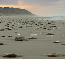 Stoney Beach by deannedaffy