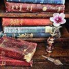 Clasic Novels by Pene Stevens