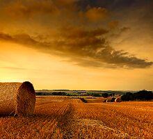 Midlothian Harvest by Derek Christie