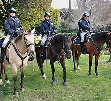 Three CHP officers and their three CHP riders by Lenny La Rue, IPA
