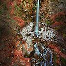 Mountain Fountain by lefotodelmaui
