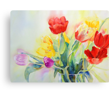 Tulip Rainbow #2 Canvas Print