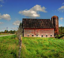 Ashtabula County Barn by Tony  Bazidlo