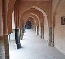 Archways, pillars and the long corridor of an old Baoli in Mehrauli in Delhi by ashishagarwal74