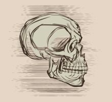 Sketch Skull by viSion Design