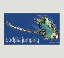 BUDGIE JUMPING by wick