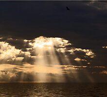 Heaven's Light by Glenna Walker