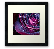 Black Velvet Framed Print