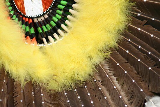 Indian Feathers by CarolM