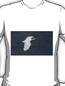 Great White Beauty T-Shirt