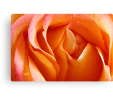 Peach Sherbet Canvas Print