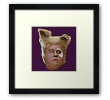 Barfolomew! Framed Print