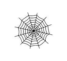 Spiderweb Photographic Print