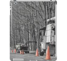Cone Country iPad Case/Skin