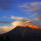 Shasta Glow by Louis Powell
