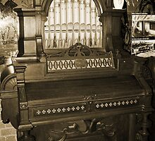 Old Pipe Organ by Evita