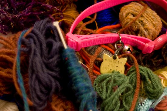 Angel Got Into the Yarn by emilybee