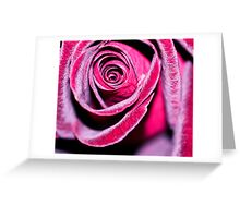Frosted. Greeting Card