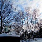 Lamp done it's job~ Early Winter Morning.... by Larry Llewellyn