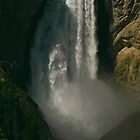 Lower Falls of the Yellowstone by Ken McElroy