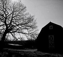 Memory by Clayton  Turner