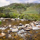 High Country Mountain Stream by Overlander4WD
