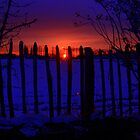 WINTER SILHOUETTE by chick
