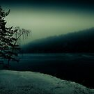 Midwinter III by trbrg
