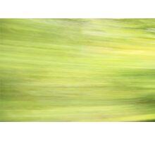Daintree Photographic Print