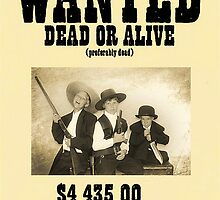 Wanted, The Nelson Gang by Samuel Vega