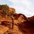 Corona Arch - Utah by Rick Schafer