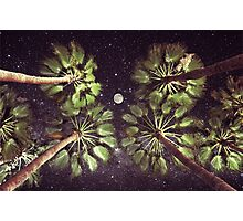Elevated Paradise Photographic Print