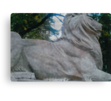 Library Lion Canvas Print