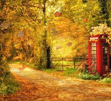 Autumn lane by Lyn Evans
