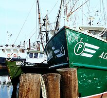 A Salty Dog /    Working fishing boats   by Rick  Todaro