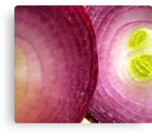 Red Onion Canvas Print
