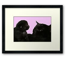big kitty little kitty Framed Print